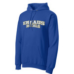 PC78H - E236-S8.1 - Applique - Pullover Hoodie